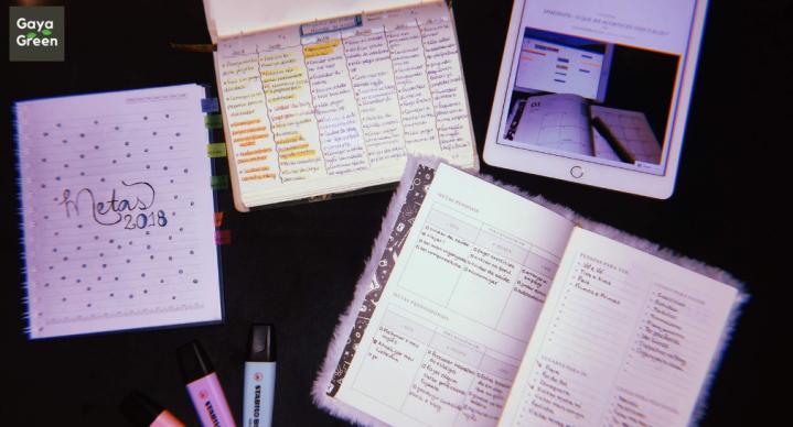 Balanço de 2018 e organizando as metas de2019